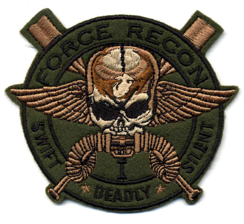 ANGLICO  Air Naval Gunfire Liaison Company  Delta Force